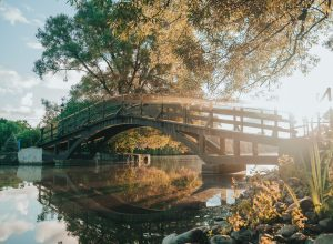 Tom Patterson Island bridge
